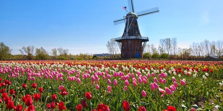 Holland Tulips Day Trip tickets
