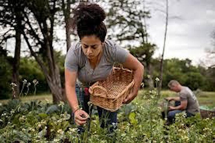 Veterans Harvest with FARM image