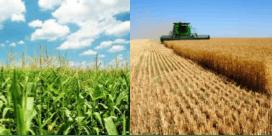 Eastern Colorado Crop Production Conference