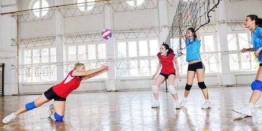 Volleyball Training Session with Professionals!