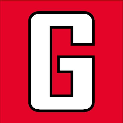 Gashouder Dedemsvaart  logo