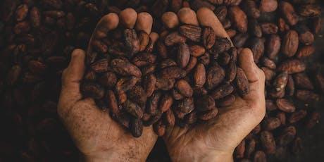 Les origines du chocolat : dégustations et mariages de saveurs billets
