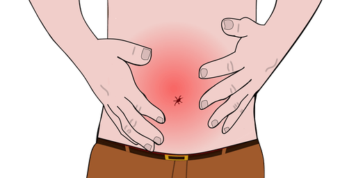 Charla Gratis:  Soluciones Para El Sistema Digestivo
