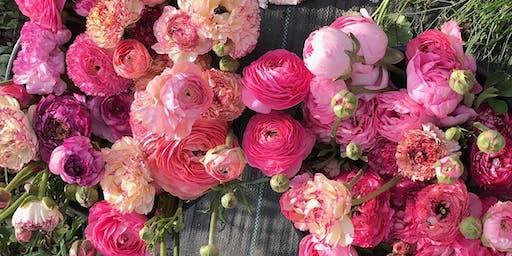 Grow Your Own Ranunculus