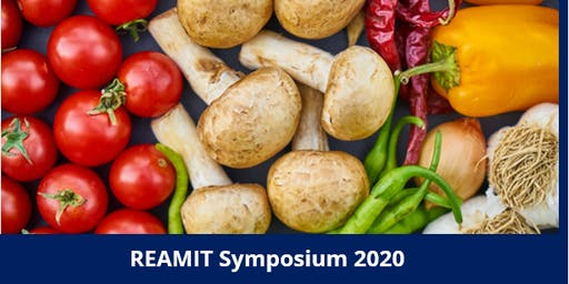 REAMIT Symposium 2020