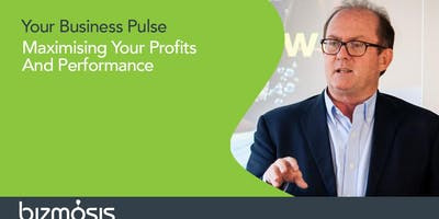 Business Pulse. Maximising Your Profits And Performance