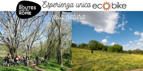 All Routes Lead to Rome - Pedalando nel patrimonio naturale biglietti
