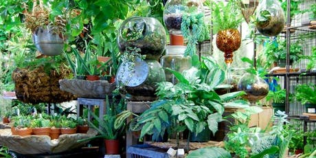 Tropical Terrarium - A Beginner's Guide to Creating a Living Ecosystem tickets