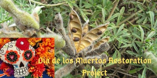 Día de los Muertos Restoration Project