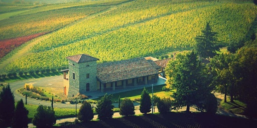 Winery Excursion in the Countryside of Emilia Romagna