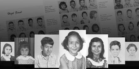 Documentary: Stolen Education (DEI)