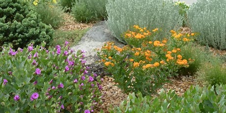 2020 Landscaping with Colorado Native Plants Conference tickets