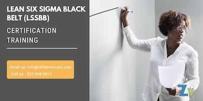 Lean Six Sigma Black Belt (LSSBB) Certification Training in Chattanooga, TN