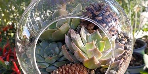 Moana Workshops: Gardens Under Glass