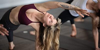 300-hr Professional Yoga Teacher Training: 75-Hour Asana Module