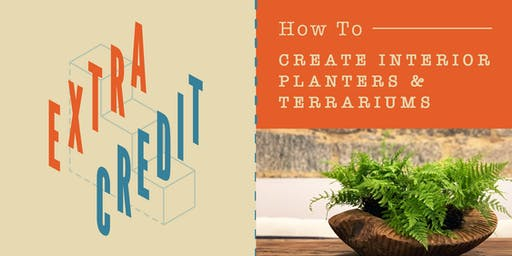 Extra Credit | Create Interior Planters & Terrariums