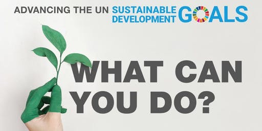 Advancing the UN Sustainable Development Goals – What can you do?