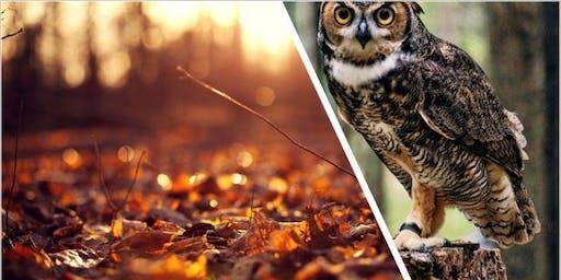 Agora ADO Owl & Birding Nature Class