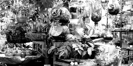 Tropical Terrarium - Halloween Edition! tickets