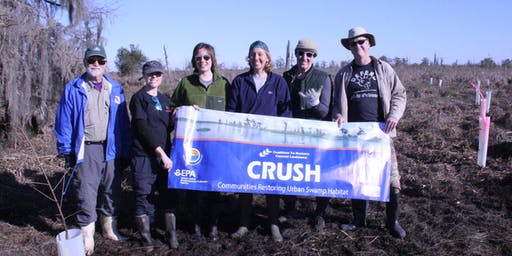 CRCL's Communities Restoring Urban Swamp Habitat Volunteer Planting Event - November 8th, 2019