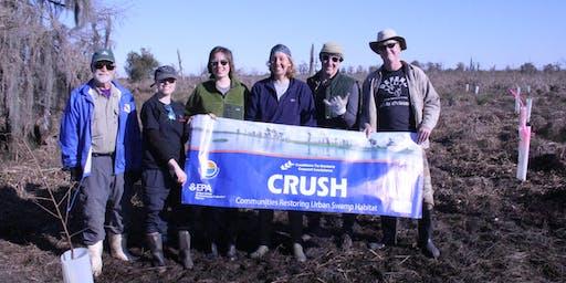 CRCL's Communities Restoring Urban Swamp Habitat Volunteer Planting Event - November 9th, 2019