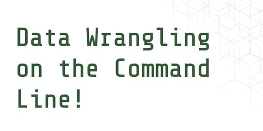 Data Wrangling on the Command Line!