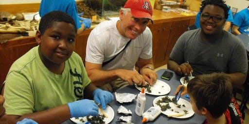Homeschool Program - Food Chains