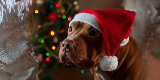 Muttley Crue's Santa Paws 2019