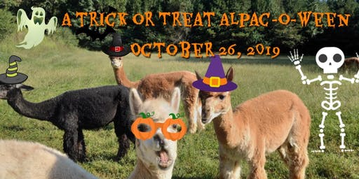 A Trick or Treat Alpac-O-Ween