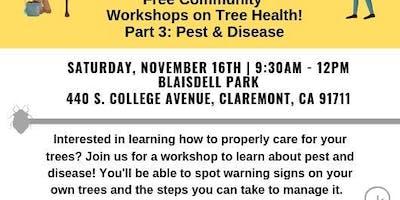 Community Workshops on Proper Tree Care