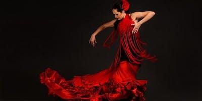 Copy of Saluos Live Flamenco Performance