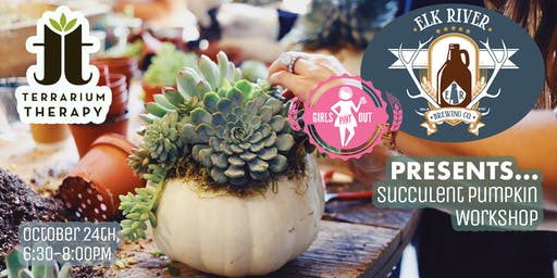 Pumpkin Succulent Workshop at Elk River Brewing Company
