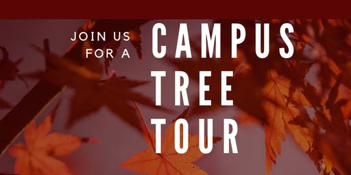 Campus Tree Tour for Grad Students