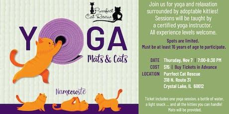 Mats & Cats Yoga tickets