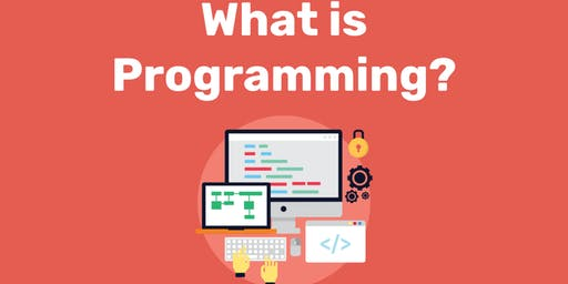 What is programming workshop for beginners