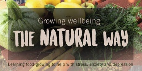 MindFood's Growing Wellbeing - free 6 session course (nr Hanger Lane tube) tickets