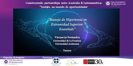 Workshop:  Manejo Ortésico de Hipertonía en Extremidad Superior entradas