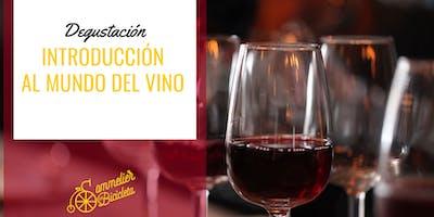 Introducción al mundo del vino y la degustación