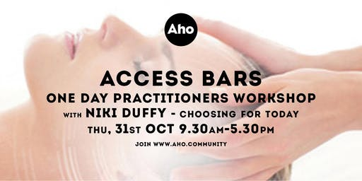 Access Bars One Day Practitioners Workshop with Shekina and Niki