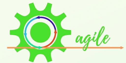 ICAgile Certified Professional - Agile Coaching