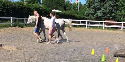 Führen und geführt werden. 6. Juni HORSE ASSISTED EDUCATION WEEK 2020