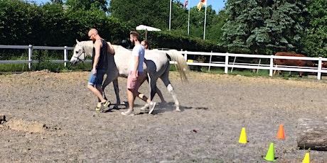 Führen und geführt werden. 6. Juni HORSE ASSISTED EDUCATION WEEK 2020 Tickets