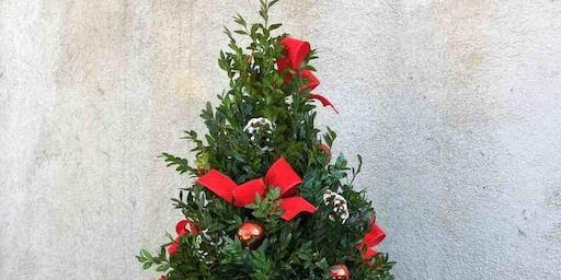 FUN & EXCITING Boxwood Tree Workshop