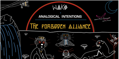 WAKO x Analogical Intentions: The forbidden Alliance