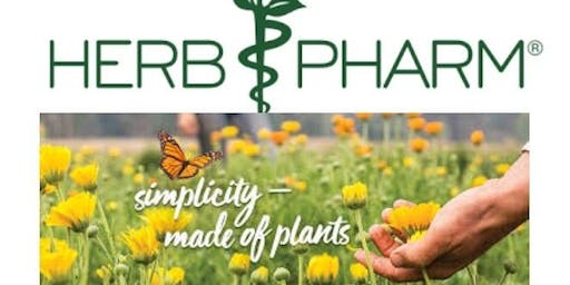 Herbal Extracts: Unlocking the Nurturing Power of Plants