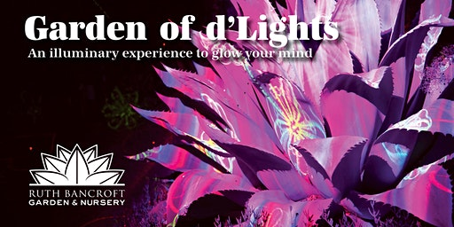 Garden of d'Lights at the Ruth Bancroft Garden