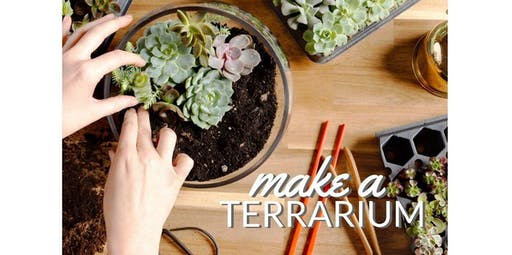 Make Your Own Terrarium! (01-04-2020 starts at 6:00 PM)
