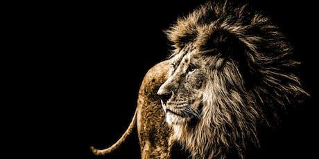 « ATTENTION AU LION !  Guide de survie pour travailleur stressé » billets