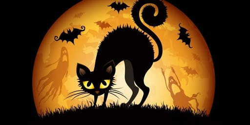 Halloween Donation Drive & Pet Items Sale October 26 at Second Hand Purrs