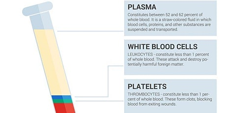 Blood Result  Interpretation tickets